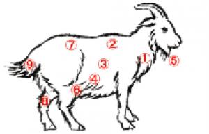 山羊の筆毛の説明